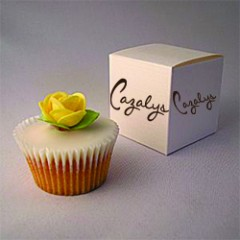 Cup Cake Day 250px x 250px Cazalys donation page picture